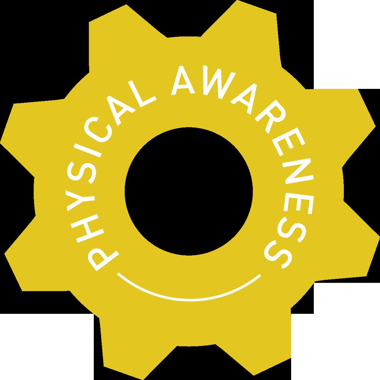 Copy of physical awareness cog