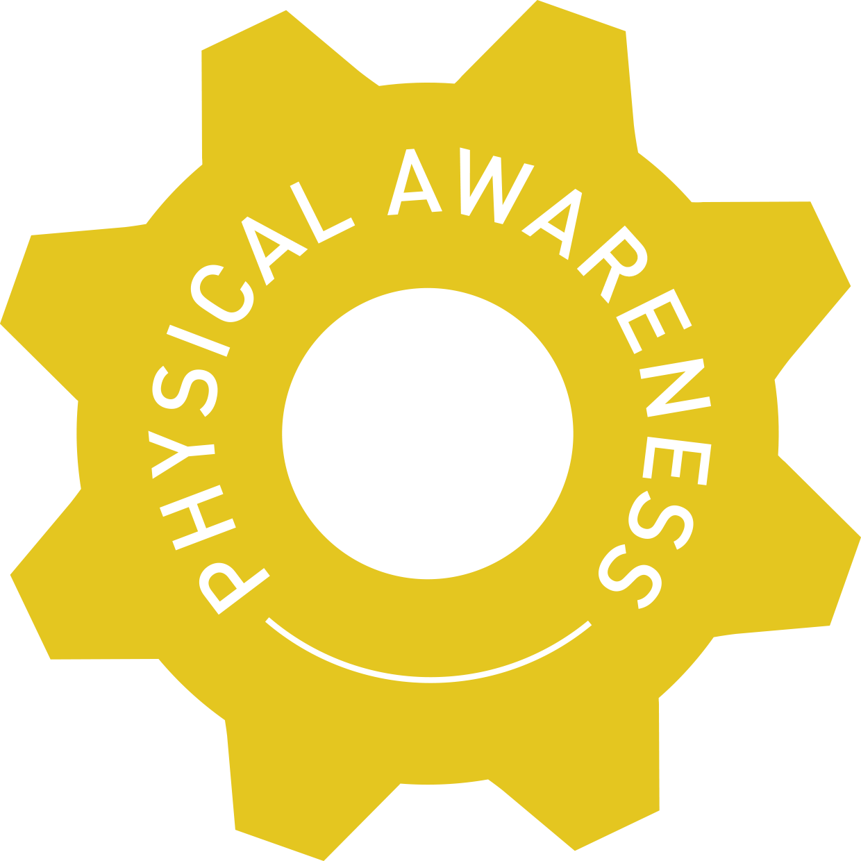 Copy of physical awareness cog